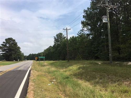 17.5 Wooded Acres Located at : West Point : Clay County : Mississippi
