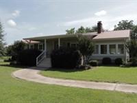 Irrigated Farmland + 3 Homes : Harrison : Washington County : Georgia