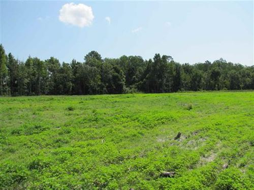 Gorgeous Farm Land & Great Location : Madison : Florida