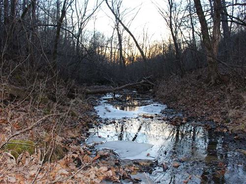 209 Acres Bordering 1600 Acre Cons : Climax Springs : Camden County : Missouri