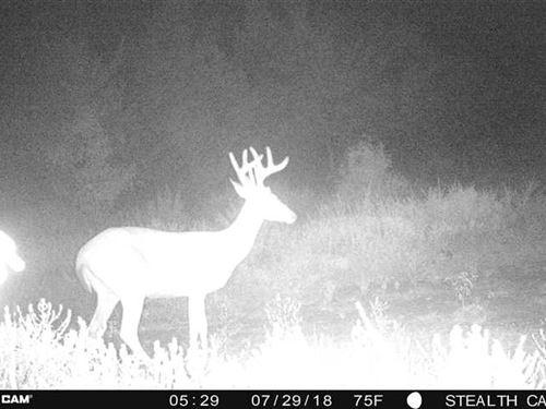 Hunting And Recreation Pushmataha : Rattan : Pushmataha County : Oklahoma
