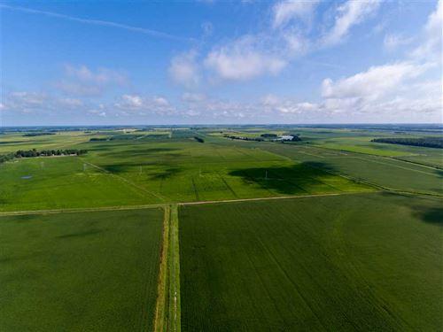 681 +/, Row Crop Farmland Acres : Waldenburg : Poinsett County : Arkansas