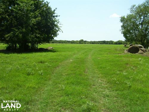Edgewood Ranch, Hay Pasture, Timber : Wills Point : Van Zandt County : Texas