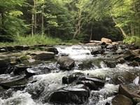 Acreage Near Salmon River Reservoir : Redfield : Oswego County : New York