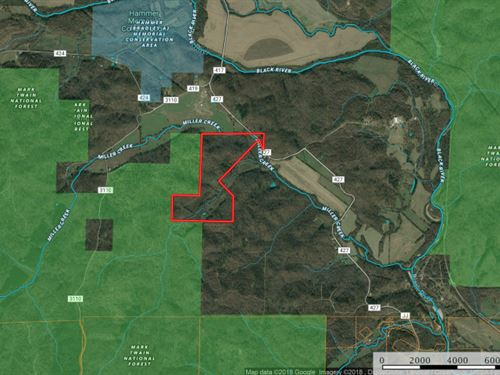 Missouri Timber Land 161 Acres : Williamsville : Wayne County : Missouri