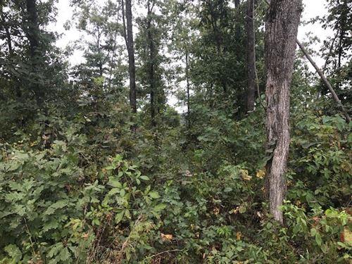 Randolph County, AR Recreational : Pocahontas : Randolph County : Arkansas