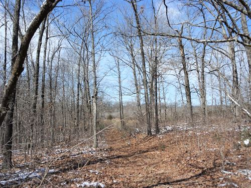 Lot/Acreage Close to Town : Mountain Grove : Texas County : Missouri