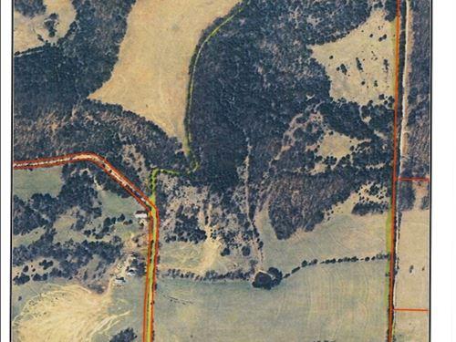 74 Acres Ava Mo 5 Miles From Town : Ava : Douglas County : Missouri