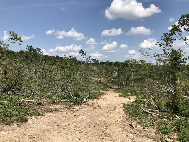 47 Acres Ravenden Hunting Land : Ravenden : Sharp County : Arkansas