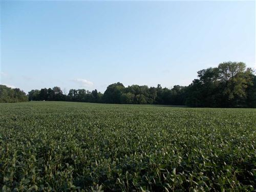 North Sunflower Place Lot 4 : West Terre Haute : Vigo County : Indiana