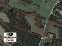 25 Acres of Recreational Land For : Kenbridge : Lunenburg County : Virginia