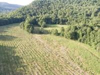 Hop Farm Heaven In Petersburg : Petersburg : Rensselaer County : New York