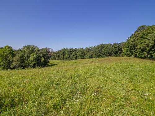 Stout Rd - 50 Acres : Logan : Hocking County : Ohio