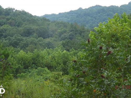 58.90 Acres Farm And Wooded Land : Booneville : Owsley County : Kentucky