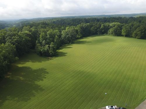 Gorgeous Lot Near Leipers Fork : Franklin : Williamson County : Tennessee