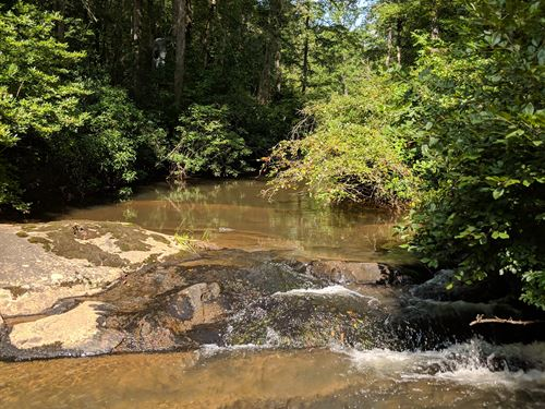 50+/- Acres Douglas County Ga : Douglasville : Douglas County : Georgia