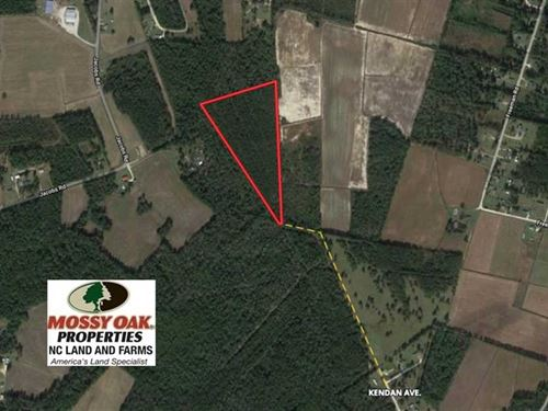 15.77 Acres of Timber Land For Sal : Bolton : Columbus County : North Carolina