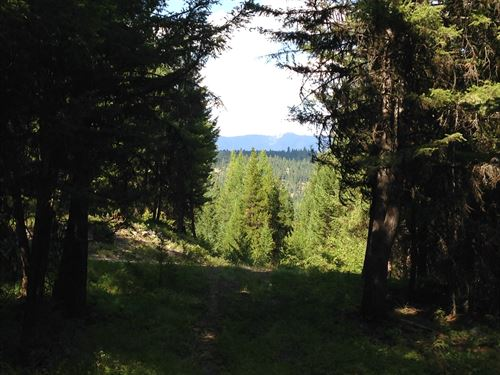 Jim Creek 20 Acres : Trego : Lincoln County : Montana