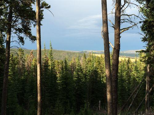 Kings Hill Cabin : Neihart : Judith Basin County : Montana