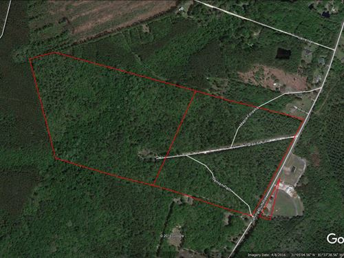 94 Acres In Great Location : Woodbine : Camden County : Georgia