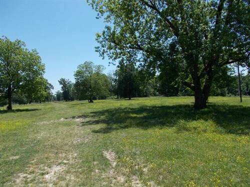 178 Acres Of Rolling Hills : Avery : Red River County : Texas
