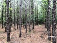 Diverse Timberland Investment : Irwinton : Wilkinson County : Georgia