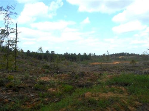 112 Acres In Montgomery County In : Kilmichael : Montgomery County : Mississippi