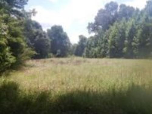 210 Acres In Claiborne County : Hermanville : Claiborne County : Mississippi