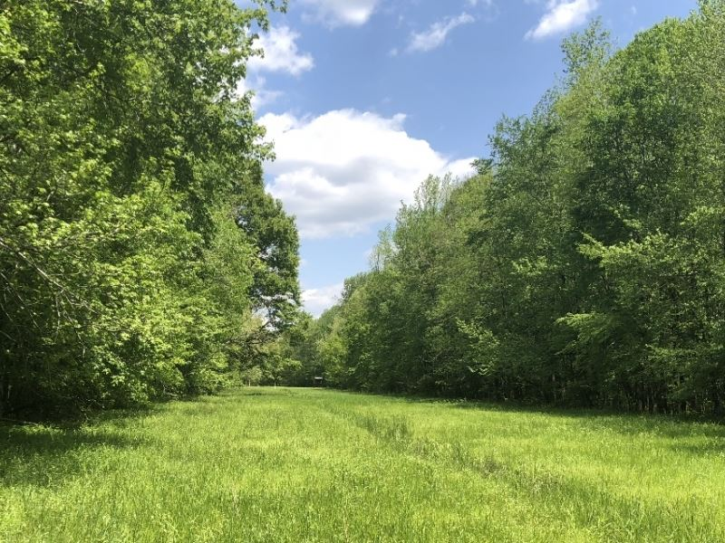 150 acres in lafayette county ms ranch for sale for Ranches for sale in mississippi