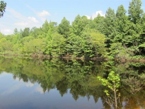 54.91 Acres In Benton County : Ashland : Benton County : Mississippi