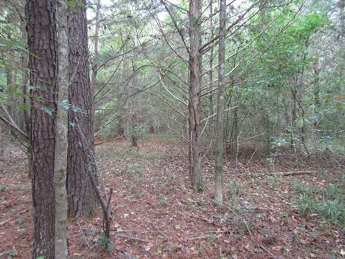 28 Acres In Hinds County : Learned : Hinds County : Mississippi
