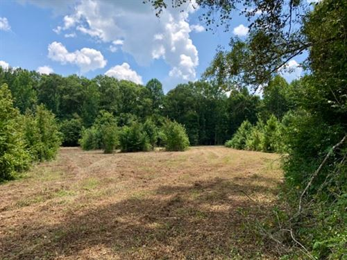 30 Acres In Madison County : Camden : Madison County : Mississippi