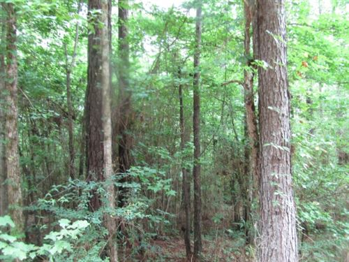 23 Acres In Franklin County : Eddiceton : Franklin County : Mississippi