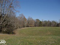 Camp Creek Farmland And Hunting Tra : Lancaster : Lancaster County : South Carolina