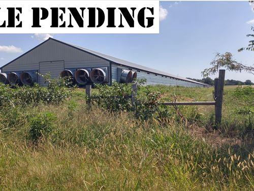 Tyson Contract Six Hse Broiler Farm : Prairie Grove : Washington County : Arkansas