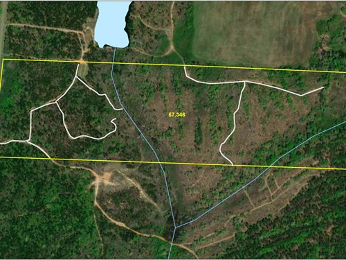 57 Acre Hunting / Homesite Property : Forsyth : Monroe County : Georgia