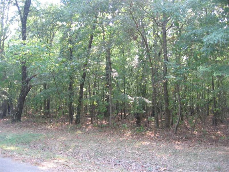 Residential Lot In The County : Canton : Madison County : Mississippi