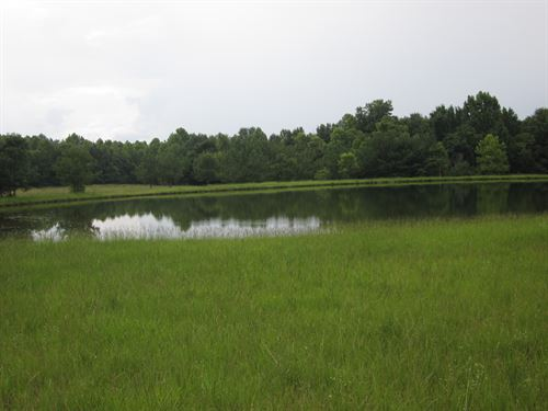 Recreation And Hunting Property : Petrey : Pike County : Alabama