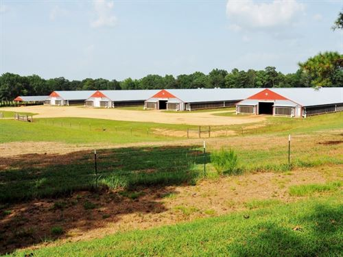 12 House Broiler Farm For Sale 114 : Smithdale : Amite County : Mississippi
