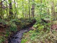 Cheap Hunting Tract-Homesite : Culloden : Lamar County : Georgia