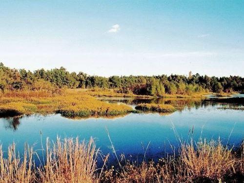 Hunting/Recreation : Haworth : McCurtain County : Oklahoma