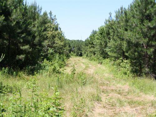 Cape Fear River Tract : Erwin : Harnett County : North Carolina