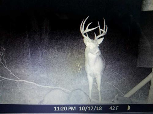 Small Property With Big Hunting Op : Cherryvale : Montgomery County : Kansas