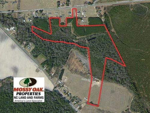 43 Acres of Hunting And Timber Lan : Evergreen : Columbus County : North Carolina