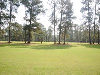 North Carolina Golf Course : Raeford : Hoke County : North Carolina