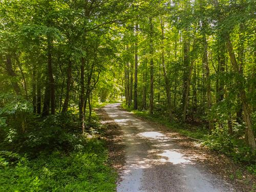 Western Oconee Foothills Property : Walhalla : Oconee County : South Carolina
