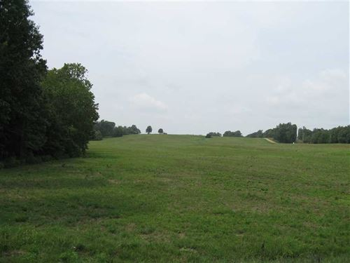 Beautiful 337 Acres Soybean And ra : Corning : Clay County : Arkansas