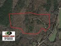 54 Acres of Recreational Hunting : Crewe : Nottoway County : Virginia