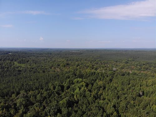 86+/- Acres On Turkey Creek : Carrollton : Carroll County : Georgia