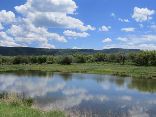 Oak Ridge Ranch : Crawford : Montrose County : Colorado